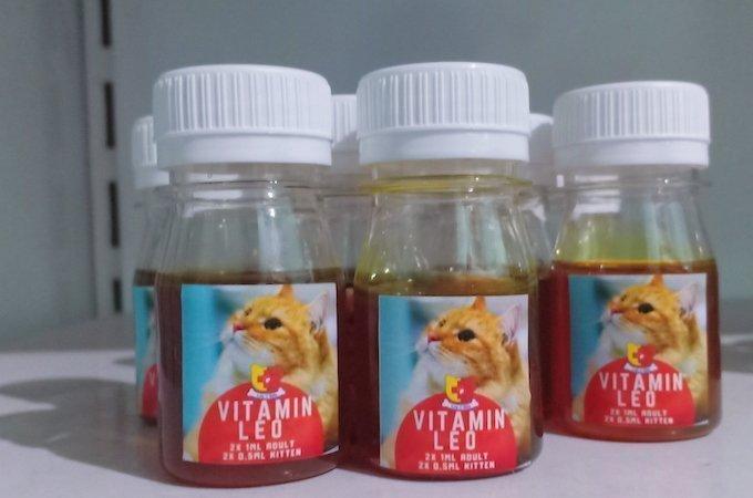 Perawatan Kucing Flu