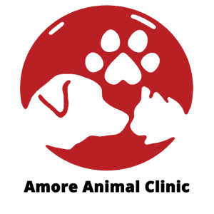 Amore Animal Clinic
